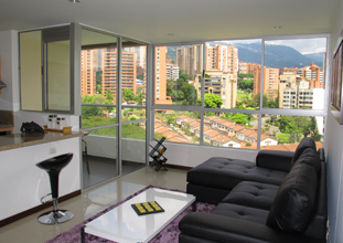 Luxury Furnished 1 Bedroom Apartment
