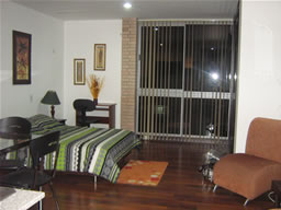 Studio Apartment for Rent in Medellin photo 4