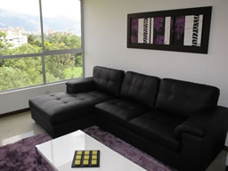 Luxury Furnished 1 Bedroom Apartment  photo 3